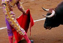 corrida de toros/ san fermin / by Cindy Lale