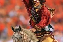 FSU Seminoles!! / by leslie fraleigh