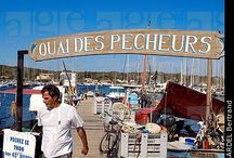 Porquerolles and Port Cros / Islands off the coast of Toulon. Home to a marine reserve.