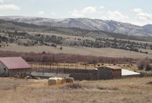 Montana Agriculture / Ranching and farming in SouthWest Montana