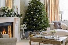 christmas / by Mandy Benamati