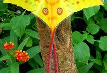 Motyle, ćmy, ważki / Motyle dzienne i ćmy. Na świecie żyje około 150 tysięcy gatunków motyli. Występują na wszystkich kontynentach, oprócz Antarktydy.