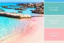 Colour palette of the Beach