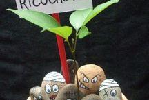 pour pots plantes