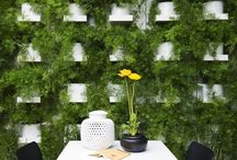 Green walls