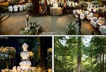 Svatba v plenéru