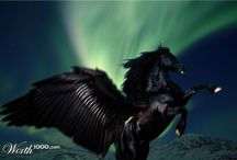 World 1000 Unicorn , Pegacorn , Pegasus / Unicorn , Pegacorn , Pegasus - Please Like and Pin ! Thank you