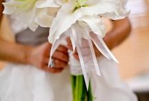 Wedding ideas :3