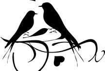 Bird Images | Bird Pictures / beautiful bird images and bird pictures for decoupage, image transfer and crafts.