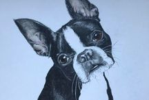 Commissioned drawings of dogs