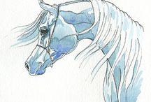 Arabian horse art / Arabian horse art; tekeningen en schilderijen van Arabische Volbloeds.