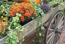Autumn Event at Spirit Gate Farm