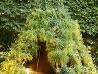 Dikey bahçeler