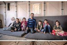 arch per rifugiati