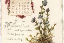 Κάρτες μηνων