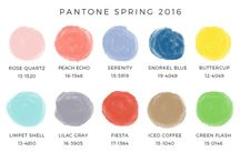 Top Color Trends of Spring 2016 / Top Color trends of the season