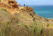 Wooree Outdoors Muriwai / Auckland is one of the most spectacular destinations in New Zealand. www.wooree.co.nz