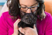 cat woman wednesday