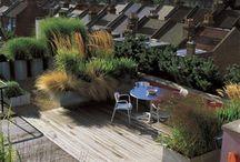 Mestské záhrady
