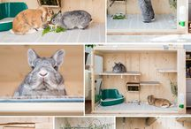 bunny cage ideas indoor