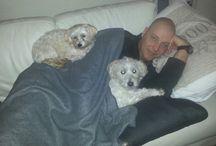 our doggy's / Onze eigen hondjes