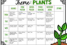 {plante}