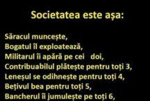 societatea