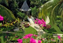 All Inclusive Resorts / Sandals & Beaches vacation planning, all inclusive vacation planning