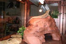 reptile hides