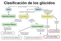 Biología / Imágenes sobre las biomoléculas (glúcidos, lípidos, proteínas y ácidos nucléicos) con información básica sobre estas.