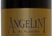 Sangiovese / Portfolio of Sangiovese Wines Distributed by www.angeliniwine.com  / by Angelini Wine