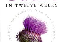 Scottish Gaelic