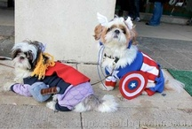 avengers assemble fun / by THELMA WADE