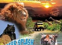 To Do: Out of Africa Wildlife Park