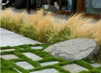 West 3rd - Modern Garden Design Inspiration / This board is to serve for design inspiration for a garden we're designing for a client who is starting from scratch!