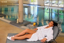 Stylish SPA / The stylish SPA at Dwór Oliwski Hotel in Gdańsk, Poland provides a wide range of relaxation facilities including swimming-pool, dry heat sauna, jacuzzi, steam bath, artficial sun and fitness room as well as face and body treatments (Thalgo, Ella Bache and Babor) and massages.