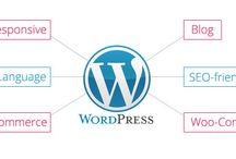 Wordpress Development / Looking for best wordpress development company in India? Sentinel Infotech provides  wordpress development services at affordable cost.