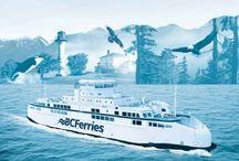 Maritime Ferries / 0