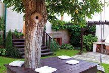 Bygga/trädgård