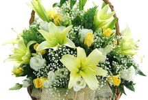 Florist in Gurgaon / Time and again, we always have been inundated with the doubt of having Flowers Delivery in Delhi. Delhi traditionally has a lot of florists in all parts of the town.  Visit:- http://flowershop18.co.in/flowers-delivery-in-gurgaon.aspx