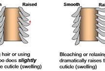 Hair care -Ingrijirea parului