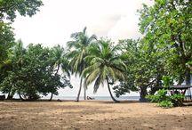10 jours en Guadeloupe / Carnet de voyage : 10 jours en Guadeloupe à Basse Terre.