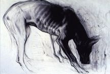 animal- drawing