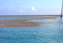 island birth