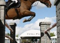 salto de obstaculos