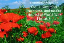 11.11 is an important day where we pay a respect to our heroes. #rembranceday #photography #history #travel #planner