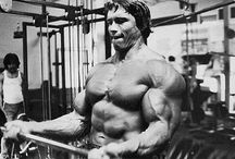 Arnold's Bicep Building Routine. DO IT NOW! / Arnold's original workout routine to build massive peaks!