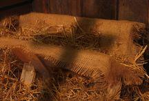 Under the Star of Bethlehem / Under the Star of Bethlehem in a stable's manger.