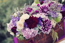 Floral Market / by Nichole Davidson