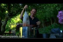 Natural Dyes from Plants